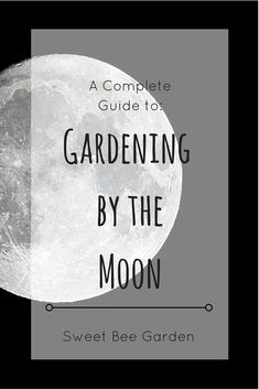 Planting and gardening according to the phases of the moon dates back centuries. Read more about this ancient technic and how to garden by the moon in your garden.