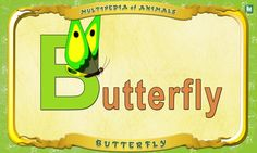 Multipedia of Animals - Letter B -  Butterfly