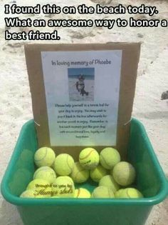 Pet memorial - beautiful way to remember a best friend