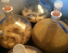 Pumpkin Pie Mead fermented in a pumpkin-  Uh, yeah... This has to happen at my house!