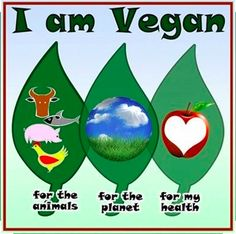 <3 They're all great reasons! <3 #MyVeganJournal