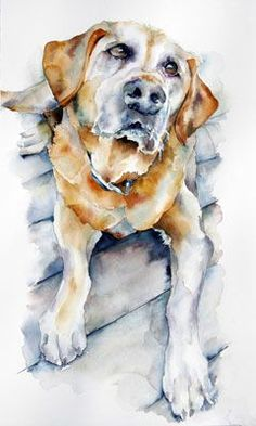 magic intrinsic to watercolor. I hope you enjoy this gallery of pets I ...