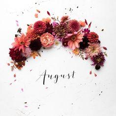 Julia @humphreyandgrace 1er Août 2017