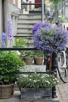 Amsterdam by cafe noHut, via Flickr