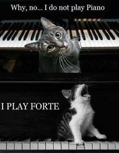 Why no...I don't play piano! hahaha this describes our band completely