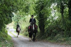 Midnight taking a novice rider out for a hack. #loveirishhorses #horseforsale  click on our website to find out more about #horseriding #holidays at Cooper's Hill Livery http://coopershilllivery.wix.com/coopers-hill-livery