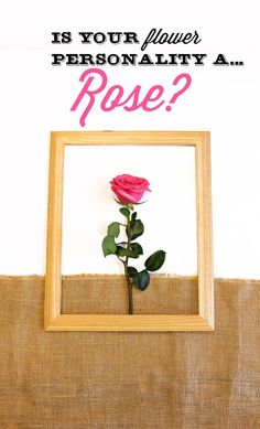 #lonestarliving Are you a Rose flower? You tend to be a romantic that loves to spend quality time with the people closest to you.  You love tradition and are passionate about life.Share with us your flower personality for a chance to win $100 VISA gift card.