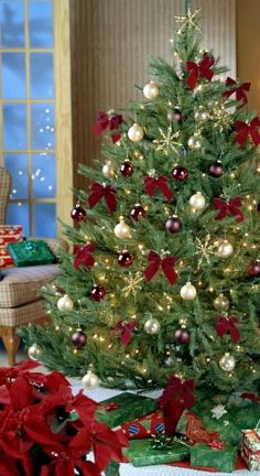 Decorating Christmas Trees!!! Bebe'!!! Love this idea of a Burgundy and green color scheme!!!