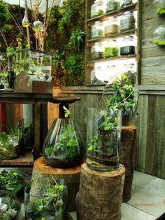 Indoor Garden Ideas 40 smart mini indoor garden ideas   garden ideas, indoor and minis