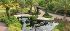 Gardens - Jacksonville Zoo