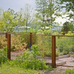 Dutchess County Contemporary Barn - industrial - Landscape - New York - Wagner Hodgson Backyard Fences, Garden Fencing, Driveway Landscaping, Fenced Garden, Outdoor Fencing, Patio Fence, Farmhouse Landscaping, Front Fence, Dog Fence