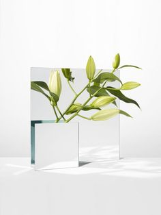 Mirror vase by Forest & Giaconia — Are. Minimal Photography, Still Life Photography, Creative Photography, Art Photography, Product Photography, Flower Vases, Flower Art, Mirror Art, Home And Deco