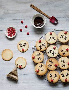 Christmas Reindeer Cookies - The first box of our gourmet Advent calendar unveils these Christmas reindeer biscuits: tasty vanil - Christmas Reindeer Biscuits, Christmas Treats, Holiday Treats, Holiday Recipes, Christmas Recipes, Christmas Decorations, Christmas Holiday, Christmas Lights, Christmas Chocolate