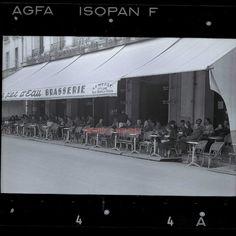 POITIERS - 1940 Terrasse du Jet d'Eau sous l'occupation, photographie professionnel prise par l'occupant.