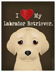 I Love My Labrador Retriever I Heart My by DogsIncorporated