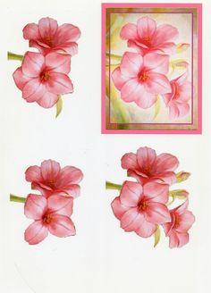http://verob.centerblog.net/rub-3d-fleurs--13.html