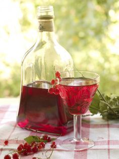 Cómo hacer licor de frutas - IMujer