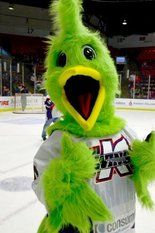 K-Wings Family Hockey Day in the 'ZOO this Sunday! Presented by Consumers Credit Union!