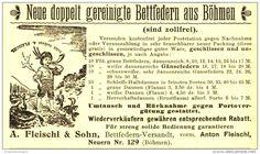 Original-Werbung/ Anzeige 1899 - BETTFEDERN AUS BÖHMEN / FLEISCHL & SOHN / NEUERN - ca. 115 x 55 mm
