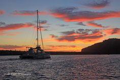 Manute'a heading home at Dana Point Harbor, courtesy Cliff Wassmann | www.dolphinsafari.com | #Danapoint #sunset #harbor #travel #california #socal #boat #catamaran #travel #ocean