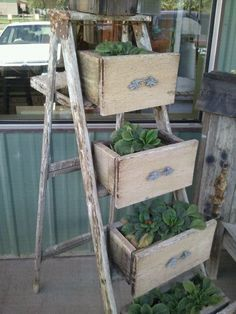 Old ladder and repurposed drawers as planters for vintage cottage style home or garden decor, could also use as storage piece in bath or bedroom; Upcycle, recycle, salvage, diy, repurpose! For ideas and goods shop at Estate ReSale & ReDesign, Bonita Springs, FL