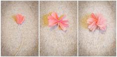 DIY Flower Pom Poms