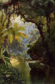 brasilianischer-urwald.jpg (394×600)