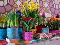 Shabby Shopper: Spring time at home!