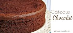 Chocolate chiffon cake is a light and spongy cake. Goes well with a heavy chocolate ganaché coating. Line bottom only of cake pan with parchment paper cut to fit. Food Cakes, Cupcake Cakes, Chocolate Chiffon Cake, Chocolate Sponge Cake, Sponge Cake Recipes, Vegetarian Chocolate, Cake Plates, Vanilla Cake, Clean Eating Sweets