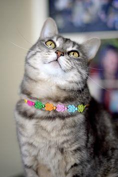 Kiki starring the Cruciani new ss2013 collection! #kikithesweetycat #pursesandi #cat #gatto #cruciani #braccialetticruciani #animals #catlovers #eyes #cute #nice #gatta #bracelets #spring #ss2013 #colors www.pursesandi.net
