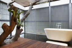 Wild and wet: the new bathrooms getting in touch with nature
