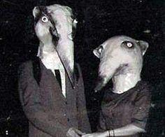 vintage animal costumes - Google Search