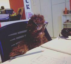 En Aerolab tenemos nuevo director creativo. #chewy #wireframes #chewbacca #starwars #theforceawakens #starwarsfans by aerolabdigital