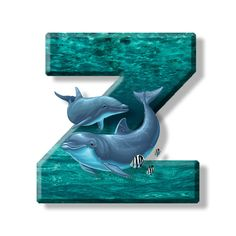 Buchstabe - Letter Z Alphabet, Letters And Numbers, Dolphins, Monogram, Illustration, Sailors, Initials, Lyrics, Marine Life