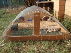 I think this was for quail but I was thinking of inspiration for a guinea pig play area outside....