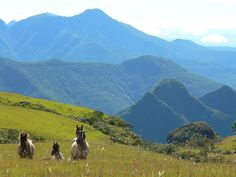 Fronteira Rio Grande do Sul - Santa Catarina (os cânions e os vales dos rios Pelotas e Alto Uruguai)