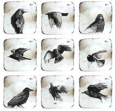 'Notes on Crows' by Ingrid Art Studio