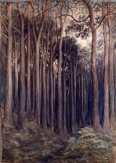 View of the Forest at Westbridge  -   Paul-Gustave Doré    1879.