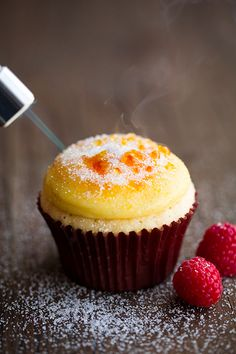 Creme Brulee Cupcakes by Cooking Classy are real proof that cupcakes can be really fancy dessert. Delicious cupcakes topped with vanilla bean pastry cream, Just Desserts, Delicious Desserts, Dessert Recipes, Yummy Food, Think Food, Love Food, Mini Cakes, Cupcake Cakes, Cup Cakes