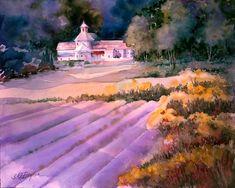 Purple Haze. Lavender Fileds.