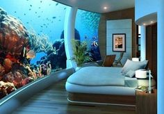 I want to live in an aquarium. Cool huh?