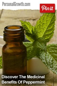 Discover The Medicinal Benefits Of Peppermint