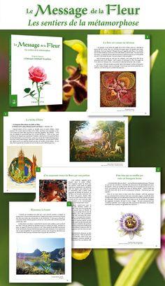 """À découvrir ou à offrir : la collection Évéra. Informations : """"Le Message de la Fleur"""" : http://www.prosveta.com/api/product/D0020FR """"Le Pierre Précieuse"""" : http://www.prosveta.com/api/product/D0021FR"""