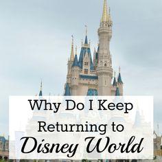 Why Do I Keep Returning to Walt Disney World; Magic Kingdom, Epcot, Hollywood Studios and Animal Kingdom | mybigfathappylife.com