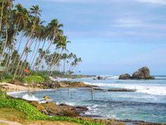 Koggala beach Sri Lanka, Beaches In The World, Naturally Beautiful, Natural Beauty, Have Fun, Surfing, Paradise, Tours, Country
