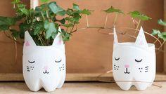 Blumentopf selbermachen Upcycling Do it yourself DIY Katzen aus Plastikflaschen basteln