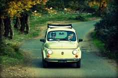 giro d'epoca tra gli ulivi    #TuscanyAgriturismoGiratola
