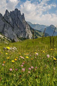 Dreierlei Gipfelerlebnisse in Fribourg Region - Reisetipps Green Earth, The Mountains Are Calling, Switzerland, Travel Destinations, Hiking, Wanderlust, Europe, World, Places