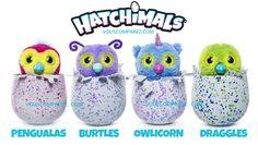 Vingts ans après le lancement des tamagotchis, le jouet star de l'époque, les Hatchimals sont