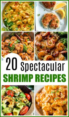 20 Spectacular Shrimp Recipes- Shrimp are an inexpensive and fast cooking protein, making them a delicious choice for busy days. Here are 20 quick and easy shrimp recipes!   food, cooking, dinner, lunch, easy recipes for busy moms, seafood, what to make with shrimp, cooking with frozen shrimp, fast dinner ideas